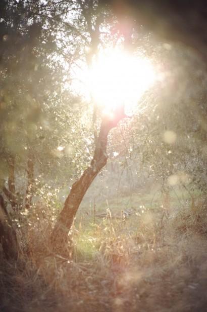 martin_pabis_Tuscany_006.jpg